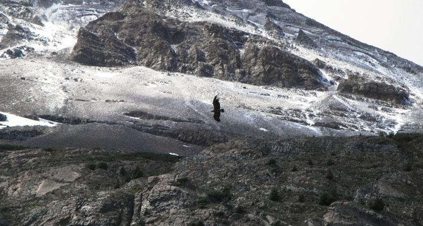 Patagonia-033