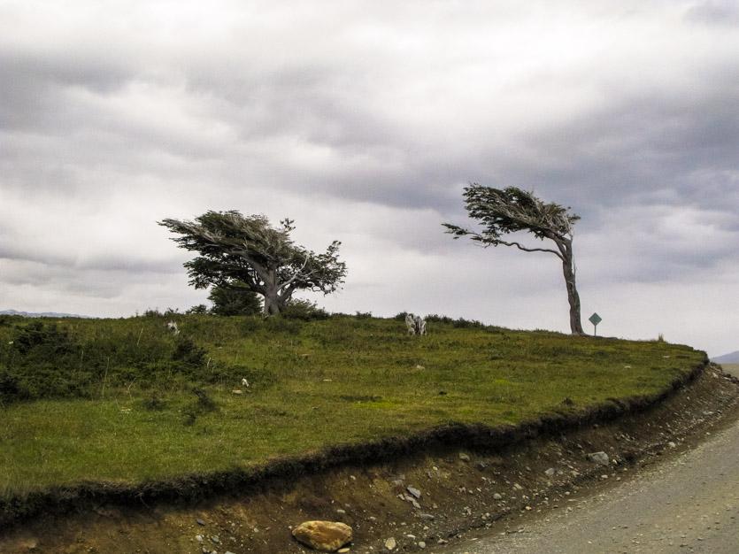 Patagonia-048